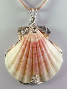 """This lovely wire wrapped pastel Scallop shell pendant measures 2 3/4"""" high and 2 1/4"""" wide, including the large triple bail. It is a lovely piece, with ju"""