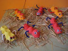 """Egg carton bugs ("""",)"""