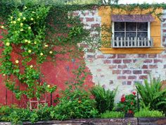 What a fun garden wall!