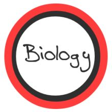 Biology help homework itmatchonline us