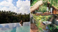 Resort Spa Treehouse Bail - destination hotel