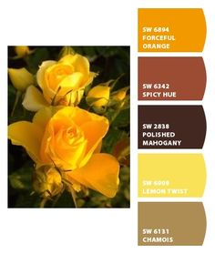 1000 Images About Homestuff Colors On Pinterest