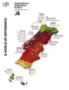 Wine Growing Regions | Relevant: The 29 Portuguese protected wine growing regions