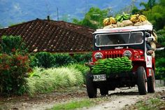The Colombian Coffee Zone, Caribbean and the Andes Mountains, all in a 12 days tour. Visit Colombia, Colombia Travel, South America Destinations, Travel Destinations, Coffee Zone, Colombian Culture, Colombia South America, Latin America, Andes Mountains