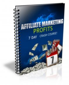 Private Label Ecourse Lets You Easily Teach Your Customers and Subscribers The Basics of Affiliate Marketing...Free eBook Report (AMP) Can use for getting optin,...With PLR
