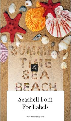 Unique font made of seashells! Use this font on #cards #labels #banner #stationery #t-shirt #illustration #sea #beach #illustrationart Graphic Design Illustration, Illustration Art, Illustrations, Unique Font, Beach Words, Holiday Time, Seashells, Small Businesses, Illustration