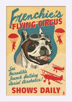 French Bulldog - Retro Flying Circus Ad - Lantern Press Artwork (12x18 Giclee Art Print, Gallery Framed, White Wood), Multi