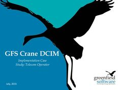 Download GFS Crane DCIM case study to see how we help business via IT and Telecom Infrastructure DCIM implementation, including ROI and payback period.
