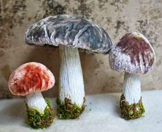 the adventures of bluegirlxo: silk velvet mushrooms~