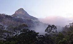 Adam's peak offers a challenging hike and breathtaking views -  8 highlights of Sri Lanka's Hill Country