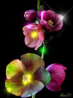 Очаровательные цветы - анимация на телефон №1159222