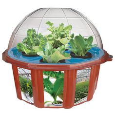 Hydro-Dome, $25.99, now featured on Fab.