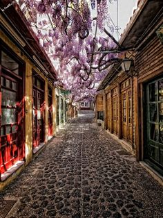 MOLYVOS, LESVOS.... The village with the most beautiful streets of the country. Every turn and a new painting! ... Το χωριό με τα ωραιότερα σοκάκια της χώρας. Κάθε στροφή και ένας καινούργιος πίνακας ζωγραφικής!