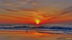 Outer Banks  NC Local Artists Facebook post: Sunrise 4-9-12, photographer credit : Lemmon