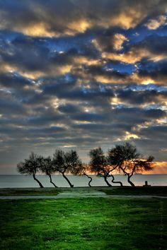 vertical by *MustafaSEZER