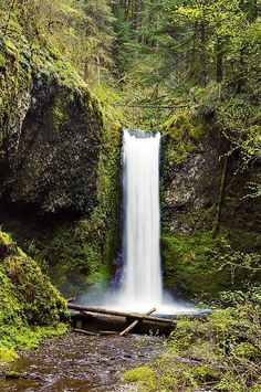 Weisendanger Falls - Columbia Gorge, Oregon (hike to top of Multnomah first, than a mile upstream)