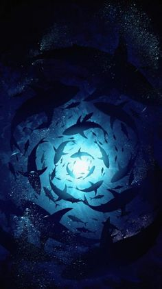 Underwater World IPhone Wallpaper - IPhone Wallpapers