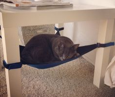 Cat Crib : A space saving cat hammock your feline will love