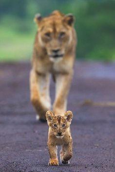 Walking ahead of mom