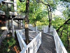 Porter house rental - Wrap-around 'deck walks' through the trees.