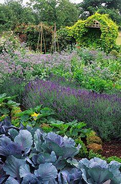 Barnsley House. Gloucestershire. Rosemary Verey's potager kitchen garden by John Glover.