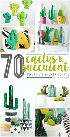 70 Cactus & Succulent Projects and Ideas