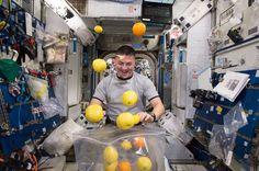 Astronaut getting fresh food