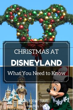 Disneyland's busiest holiday can be fun - or a nightmare. Take a look at the pros and cons.