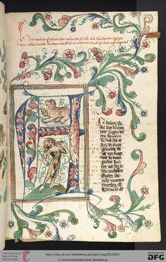 Cod. Pal. germ. 300Konrad von MegenbergDas Buch der NaturHagenau - Werkstatt Diebold Lauber, um 1442-1448?Page:287rA-Initiale mit wildem Mann und Bär im Binnengrund