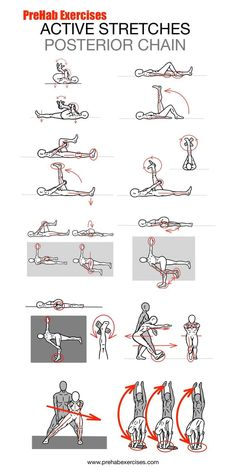 Stretches - Active Stretches for the Posterior Chain