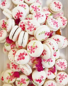 Macaron Cookies, Cupcake Cookies, Cupcakes, Cute Desserts, Delicious Desserts, Macaron Wallpaper, Whole Food Recipes, Cake Recipes, Paint Cookies