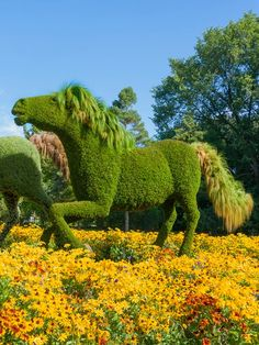 The Ponies Mosaicultures in Montreal Botanical Garden, Canada