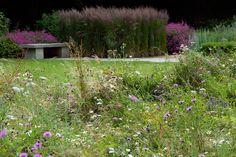 wildflower simulation Gloucestershire — Dan Pearson Studio