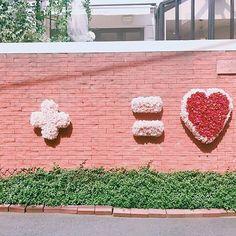 7月号「私たち、インスタジェニックに生きていく!」では、インスタについて特集中❤️ 可愛いオブジェの展示時間は @st.valentine.harajuku をチェックしてね☝️✨ #リースの返却中に可愛すぎるお花のハートの壁を発見 #原宿セントヴァレンタイン教会 #ヴァレンタイン教会 #愛の村 #東京 #原宿 #明治神宮前 #ハートの壁 #お花 #flower #japan #インスタジェニック #フォトジェニック #撮影 #andgirl #アンドガール