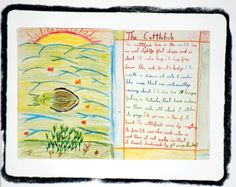 Waldorf ~ 4th grade ~ Human & Animal ~ Cuttlefish ~ main lesson book