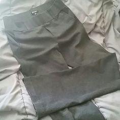 Pants Daisy Fuentes Soft Dress Pants Elastic Waist Daisy Fuentes Pants Straight Leg