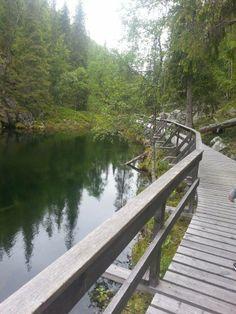 Toivomuslähde - Pyhätunturi Outdoor Activities, Bellisima, Finland, Safari, Places To Go, Trail, National Parks, Hiking, Photography