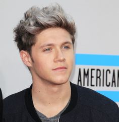 Niall Horan One Direction One Direction Zayn Malik, One Direction Singers, 0ne Direction, Niall Horan 2013, Irish Singers, Naill Horan, Niall And Harry, Dylan Sprouse, Platinum Blonde Hair