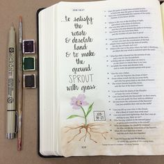 Job 38:27 #biblejournaling #biblejournalingcommunity #illustratedfaith #biblejournalingdaily #journalingBible #biblejournal #documentedfaith #biblejournalinspiration #belovedartbible