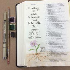 Job 38:27 #illustratedfaith #biblejournaling #bibleart