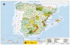Mapa de los Aceites de Oliva Virgen españoles con DOP - Diario de Gastronomía: Cocina, vino, gastronomía y recetas gourmet