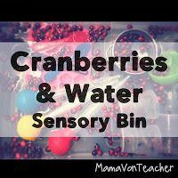 cranberries and water sensory bin #sensoryplay #thanksgiving #finemotor MamaVonTeacher