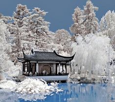 """Photo """"Chinese Garden"""" in the album """"Architecture Wallpapers"""" by xsylus Asian Garden, Chinese Garden, Chinese Courtyard, Beautiful World, Beautiful Gardens, Beautiful Places, Beautiful Landscapes, Beautiful Pictures, In China"""