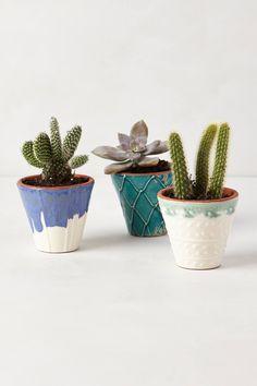 Handpainted Windowsill Pots