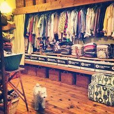 女性で、Otherのクローゼット/寝室/woodbox/雑貨/手作り/収納…などについてのインテリア実例を紹介。(この写真は 2015-08-12 07:08:21 に共有されました)