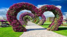 Beautiful Nice Animation with Natural Flower Scenery, Dream Background V. Dream Background, Video Background, Video Editing Apps, Whatsapp Dp Images, Disney Princess Pictures, Love Garden, Wedding Videos, Download Video, Scenery