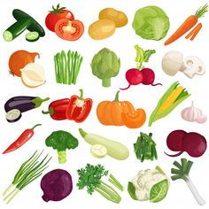 Vegetables icons set with pumpkin cabbage tomato artichoke carrot spring onion zucchini and mushrooms isolated vector illust Asian Vegetables, Fruits And Vegetables, Vegetables List, Vegetables Garden, Healthy Vegetables, Roasted Vegetables, Vegetable Pictures, Parmesan Green Beans, Vegetable Illustration