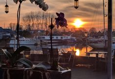 Drimmelen#breda#netherlands#Harbor#sunset