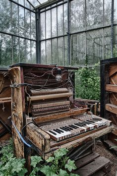 music old nature building Windows piano abandoned HDR decay indoor urbex conservatory glass house Abandoned Buildings, Abandoned Mansions, Old Buildings, Abandoned Places, Derelict Places, Abandoned Castles, Urban Exploration, Haunted Places, Ghost Towns