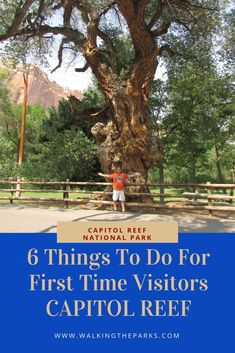 6 Things To Do In Capitol Reef National Park for The First Time Visitor - Walking The Parks Beautiful Places In America, Beautiful Places To Visit, Cool Places To Visit, Capitol Reef National Park, Zion National Park, Utah Vacation, Utah Camping, California Travel, Best Vacations